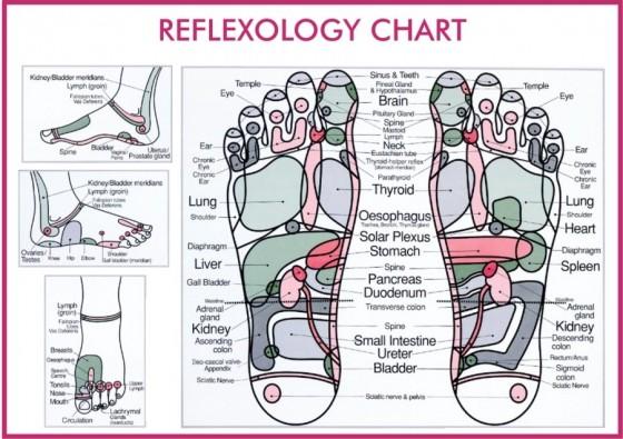 reflexology leaflet 2012 02